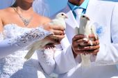 Bride And Groom  With White Doves