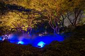 stock photo of kanto  - Seasonal illuminations around Christmas day at Rikugien Garden Tokyo Japan
