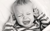 picture of groping  - cute little boy crying and holding his ear on a white background  - JPG