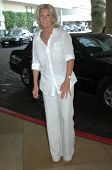 Meredith Baxter  at the Hallmark Channel presentation during the 2008 Television Critics Association