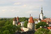 Old Town Of Tallinn In Spring