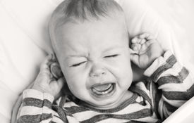 pic of groping  - cute little boy crying and holding his ear on a white background  - JPG