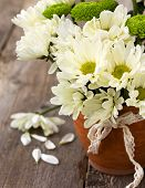 Bouquet Of White And Green Chrysanthemums