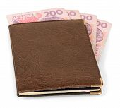 Wallet with Ukrainian banknotes