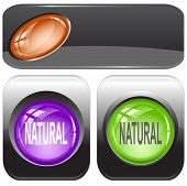 Natural. Internet buttons. Raster illustration.
