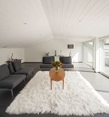 Modern house, attic