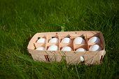 eggs in a wicker basket, green grass background