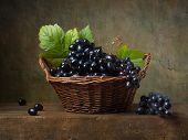 Still life with black grapes in a basket on the table
