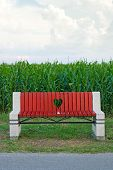 Wooden Bench In Corn Field