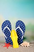 Color flip-flops on sand, on nature background