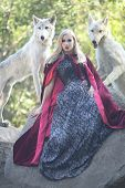 Beautiful Woman Posing With Wolves Outdoors