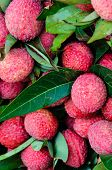 Close-up Of Red Fresh Lychee Fruits In Thailand Market