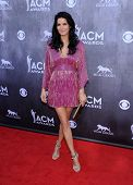 LOS ANGELES - APR 06:  Angie Harmon arrives to the 49th Annual Academy of Country Music Awards   on
