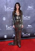 LOS ANGELES - APR 06:  Kelleigh Bannen arrives to the 49th Annual Academy of Country Music Awards