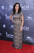 LOS ANGELES - APR 06:  Martina McBride arrives to the 49th Annual Academy of Country Music Awards