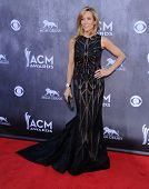 LOS ANGELES - APR 06:  Sheryl Crow arrives to the 49th Annual Academy of Country Music Awards   on A