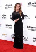 LAS VEGAS - MAY 18:  Shania Twain arrives to the Billboard Music Awards 2014  on May 18, 2014 in Las