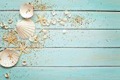 picture of marines  - seashells frame on wooden background - JPG