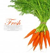 Fresh carrots with leaves isolated on white background