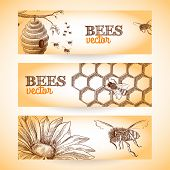 foto of bee-hive  - Honey bee hive comb and flower sketch banners set isolated vector illustration - JPG