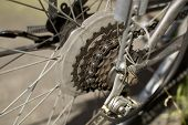 Sprocket Of Bicycle Wheel
