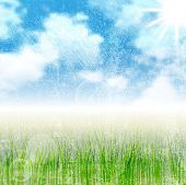 Grunge nature landscape. Bright vector background