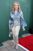 LOS ANGELES - JUL 8:  Morgan Fairchild at the Crown Media Networks July 2014 TCA Party at the Privat
