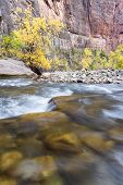 Autumn On The Virgin River