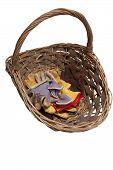 Gardening Gloves And Basket