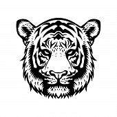 picture of tigers-eye  - tiger head vector graphic illustration black and white - JPG