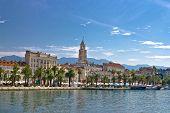 Split Waterfront Palm Promenade View