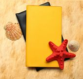 Seastar And Seashells With Notebook On Stained Paper