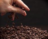 Hand grabbing coffee beans.