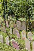 Jewish Cemetery In The Town Of Wiesloch