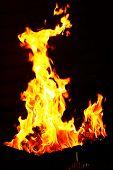 picture of brazier  - Bonfire in brazier - JPG