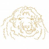 Funny Sheep Chewing. Vector Line Drawing