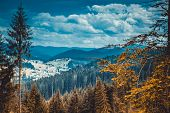 Beautiful autumn landscape in mountains Karpaty in the forest.