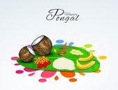 South Indian harvesting festival, Happy Pongal celebrations with sugarcane, kites, wheat grain and rice in floral decorated traditional mud pot.