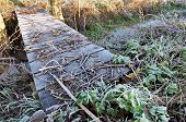 Footbridge Covered With Frost
