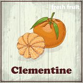 Fresh Fruit Sketch Background. Hand Drawing Illustration Of Clementine