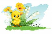 cute chicken on a background of yellow flowers and lily of the valley