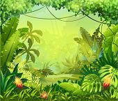 pic of jungle flowers  - Illustration vector amazon jungle with red flowers - JPG