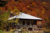 Rural House On A Background Of Autumn Forest