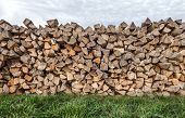 Woodpile on a meadow