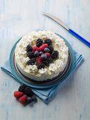 pic of ice-cake  - ice cream cake with mix berries - JPG
