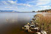 stock photo of lagos  - beautiful torre del lago view in tuscany - JPG