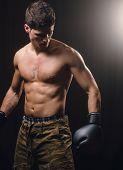 stock photo of boxers  - Boxer man posing in a studio shot - JPG