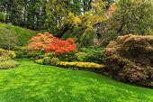 picture of masterpiece  - Butchart Gardens  - JPG