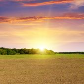 pic of plow  - A plowed field and beautiful sun set - JPG