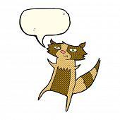 picture of raccoon  - cartoon raccoon with speech bubble - JPG